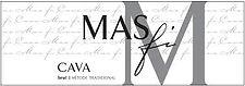 mas_fi_logo.jpg
