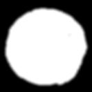 Seito_logo_whtie.png