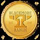 BR-Gold Logo.png