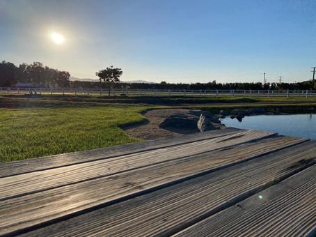 Moto Track Pond