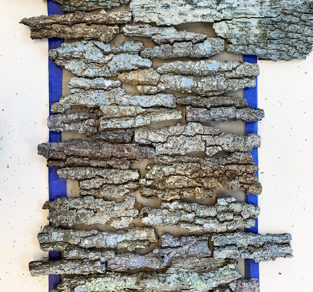 assembled bark elements