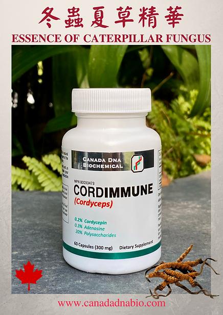 CordImmune New Label (Website).png