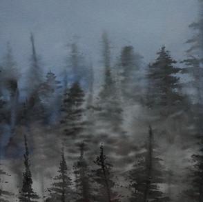 Morning Mist 14 x 10.jpeg