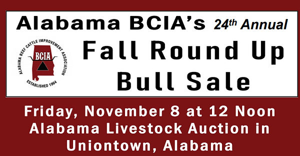 BCIA sale info 2019_edited.jpg