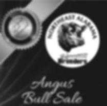 NEAL Perf Bull Sale 2019 info_edited.jpg