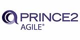 DIIT Prince 2 Agile