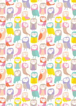 AP_Owls_Characters_Pastel_Birds_Kids_Dec