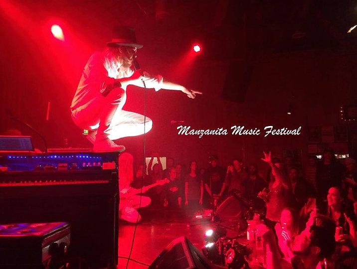 Manzanita music festival pic.jpg