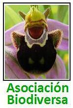 Logo Biodiversa con texto.jpg