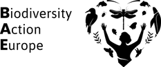 BAE black logo with text.png