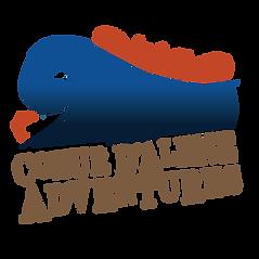 CDA_CMYK_Logo (1).png