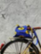 Sky cobalt bike.jpg