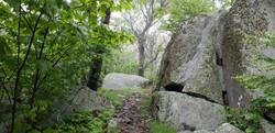 201802018 Shenandoah National Park Appalachian Trail Section Hike622_170231