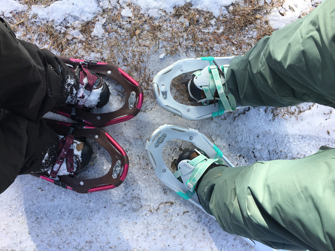 Snowshoes and Sunshine