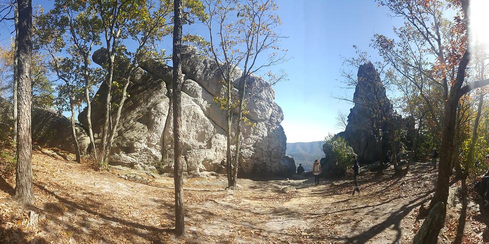 Appalachian Trail Section Hike-Triple Crown, Virginia