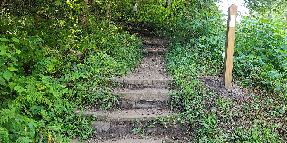 Appalachian Trail Section Hike (Section 2)-The Next 53