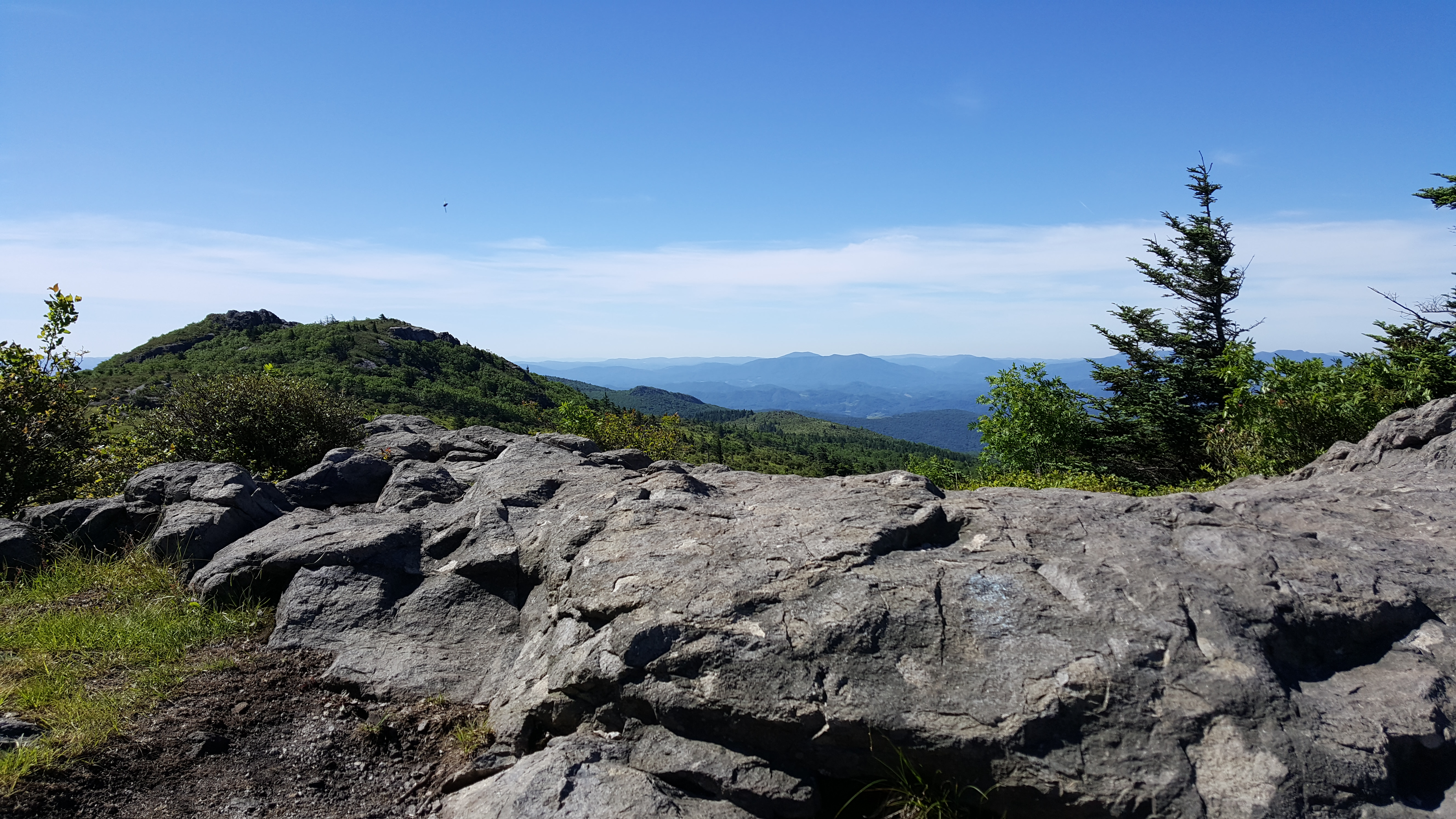 View from Mt. Rogers, VA.