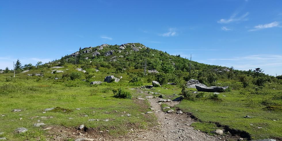 Appalachian Trail Hike-Virginia (July)