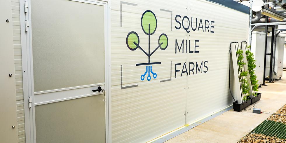Square Mile Farms Rooftop Farm Tour