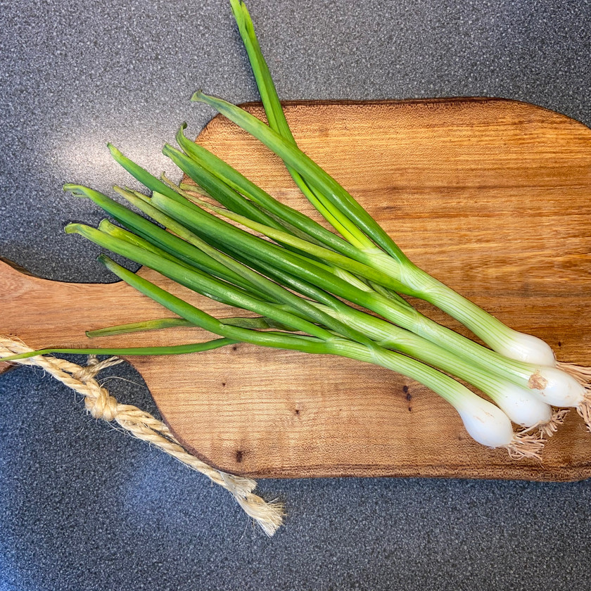 how to grow spring onions from their root bases