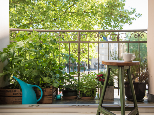 5 Top Tips for Balcony Gardening