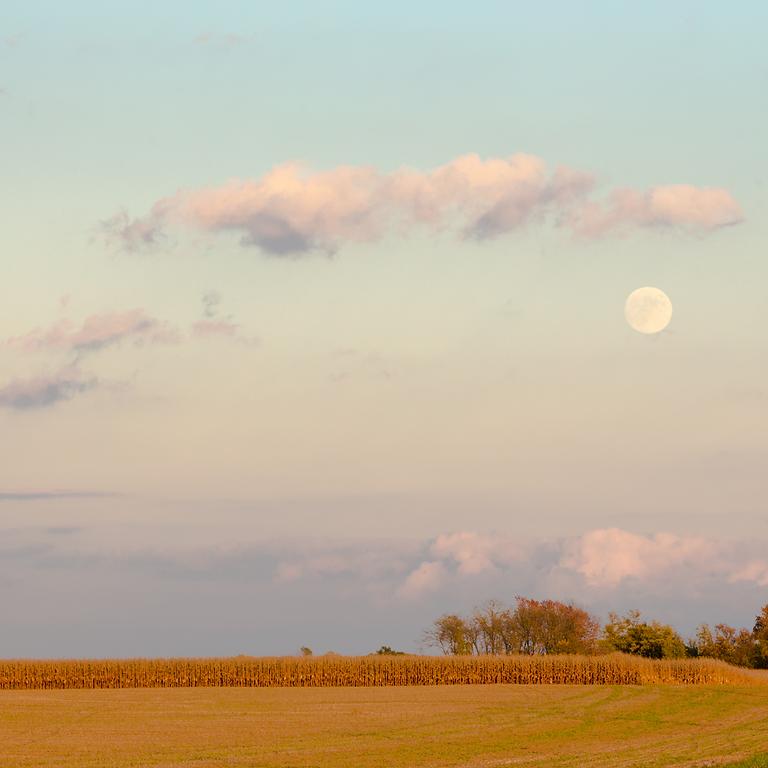 Harvest Moon in Pisces