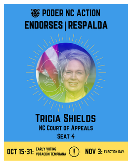 Tricia Shields | North Carolina Court of Appeals | Seat 4