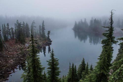 Bays Lake Fog