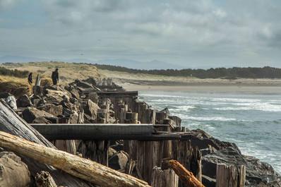Beach pilings