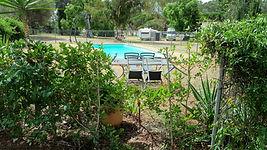 Park pool