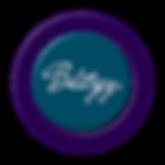 BLITZEY LOGO BVL 3-20-19 003.png