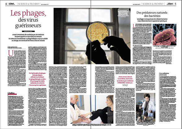 Phage therapy (le Monde)