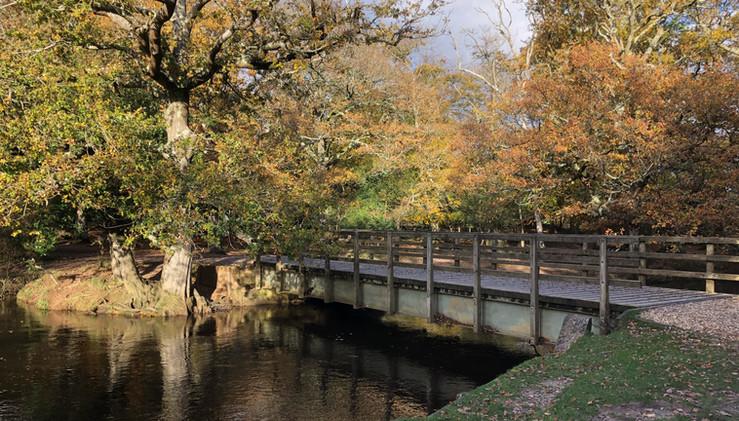 Bolderford Bridge, Brockenhurst