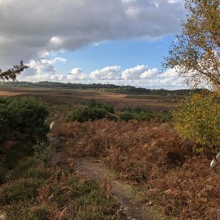The Smugglers path, Burley