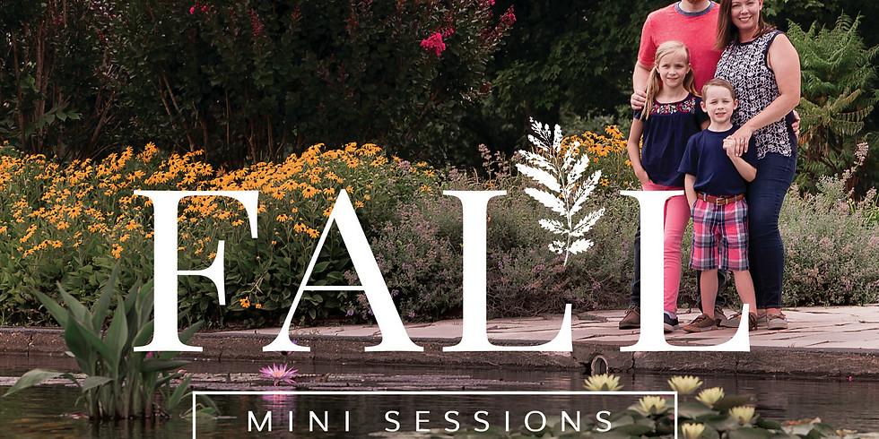 M2 Fall Mini Session (St. Louis)