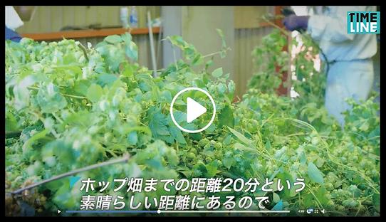 動画キャプ1.png