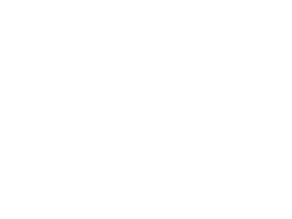 HelicopterWhite.png