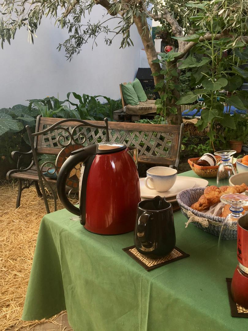 colazione in giardino/breakfast in the garden