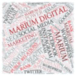 Digital marketing service-Marium Digital