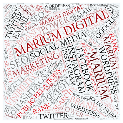 Digital marketing service-Marium Digital