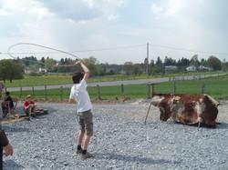 Cowboys / cow-boy