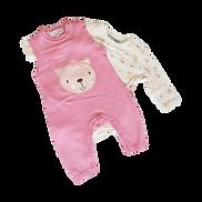 Baby Girl Onesies / Bodysuits