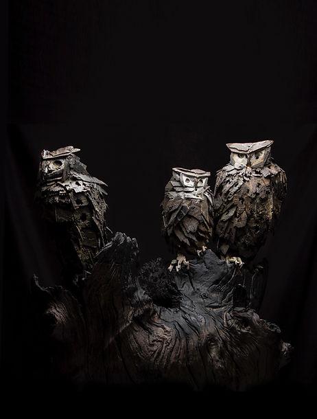 Simon Max Banister_Jen Family Owls_3.jpg
