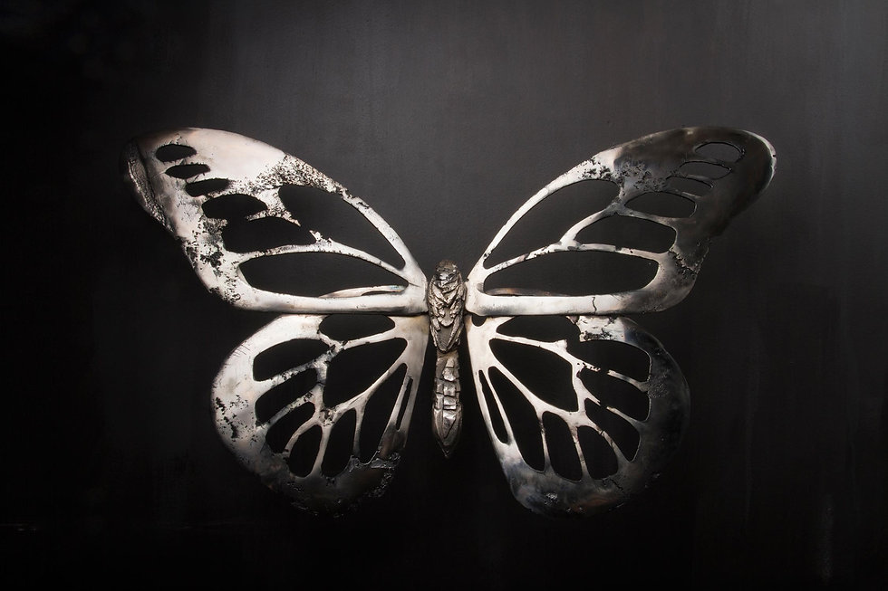 You-Give-me-Butterflies.jpg