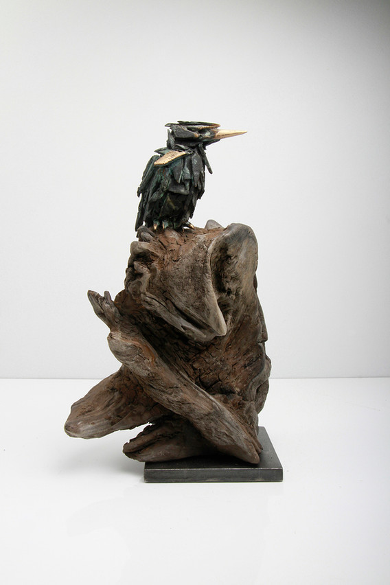 Kingfisher on Driftwood_ White Back_Simo