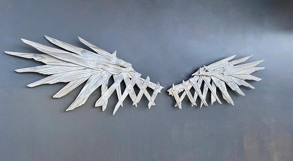 Wings-and-Warriors.jpg