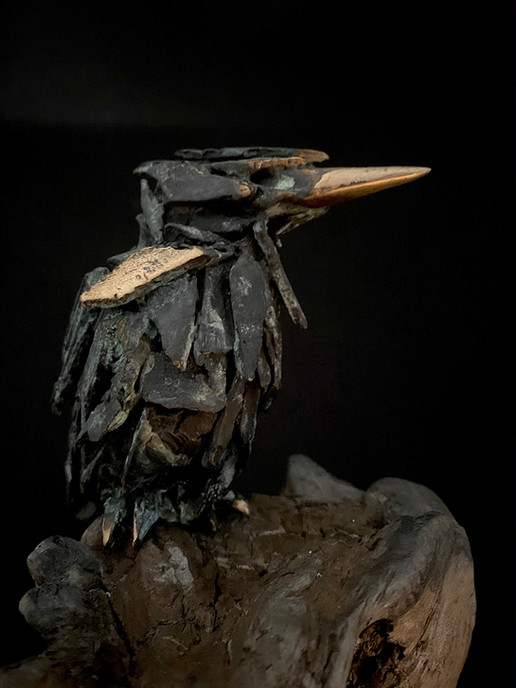 Kingfisher on Driftwood_Simon Max Bannis