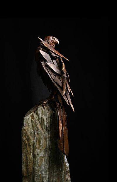 Bronze Falcon-Renwick_Simon-Max-Banniste