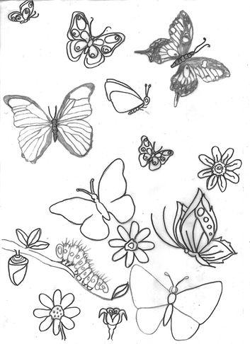 mariposas%20001_edited.jpg