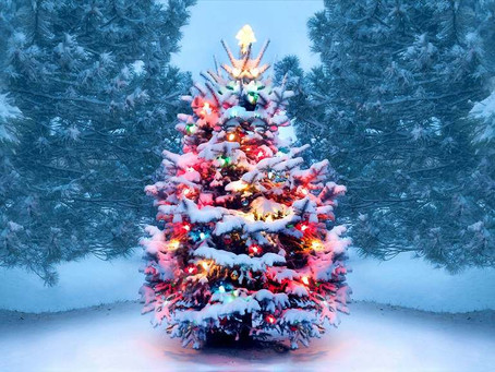 Ways To Have A Happy Holiday During COVID-19
